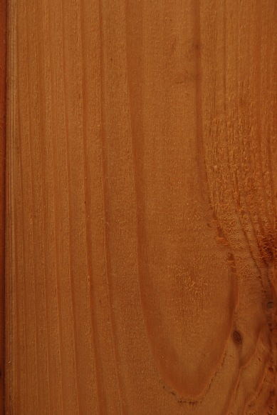 Pine Stained